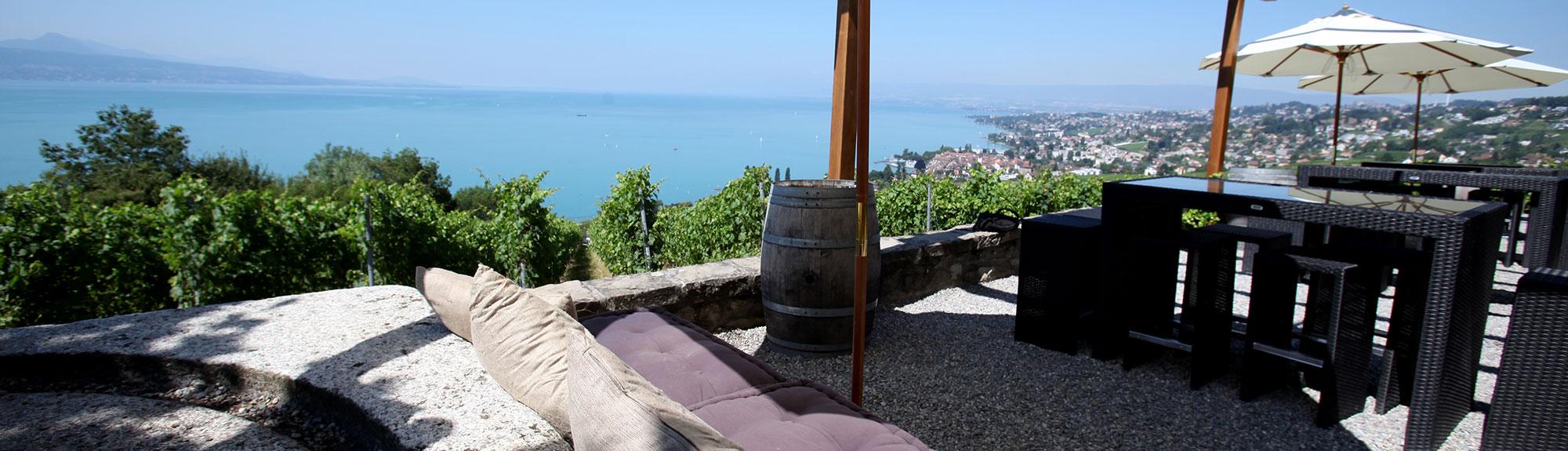 daley-terrasse