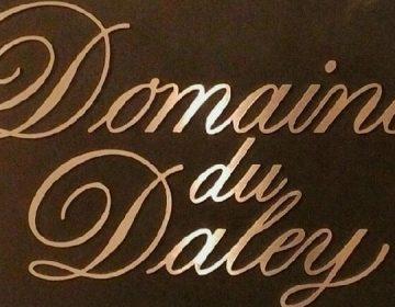 news-daley